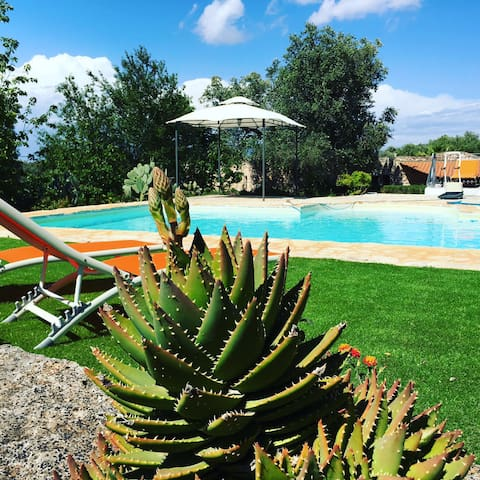 Quiete e relax sotto gli ulivi della Puglia