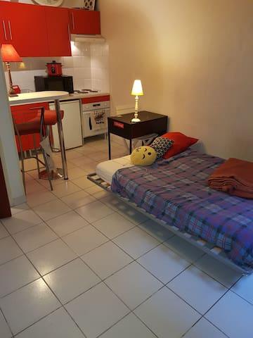 Agréable studio aux Carmes (Centre ville)