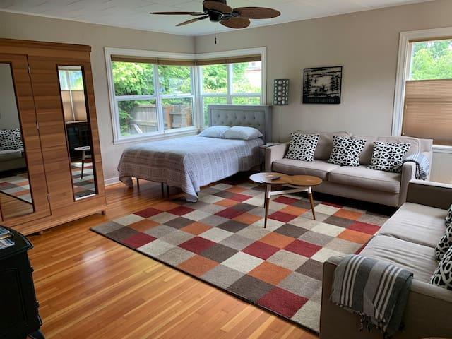 Living room/Queen Bed