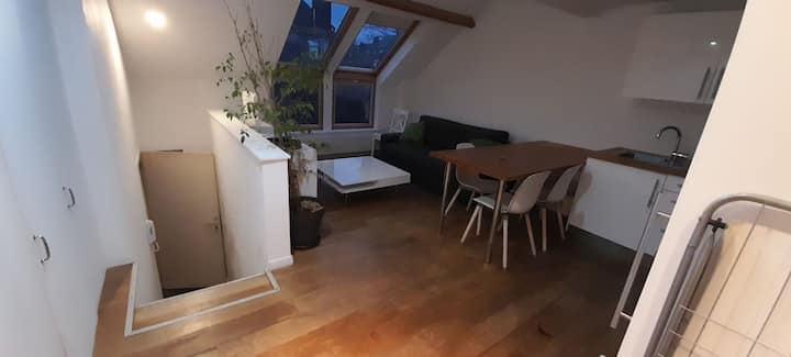 2 bedrooms -Louise Apartment