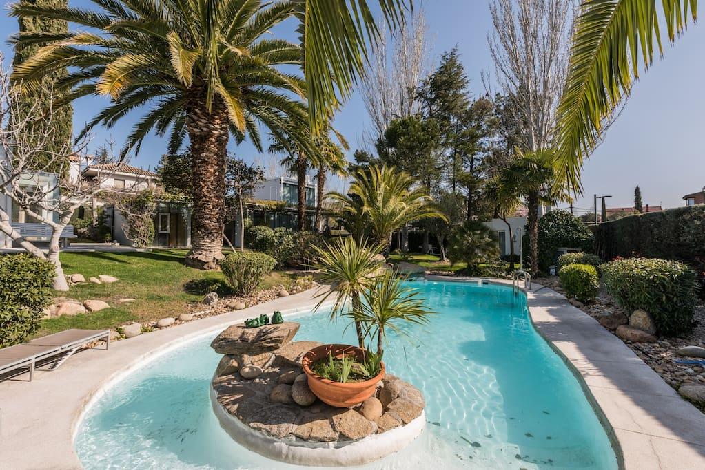 Adosado con jard n y piscina relax adosados en alquiler for Restaurantes con piscina en comunidad de madrid