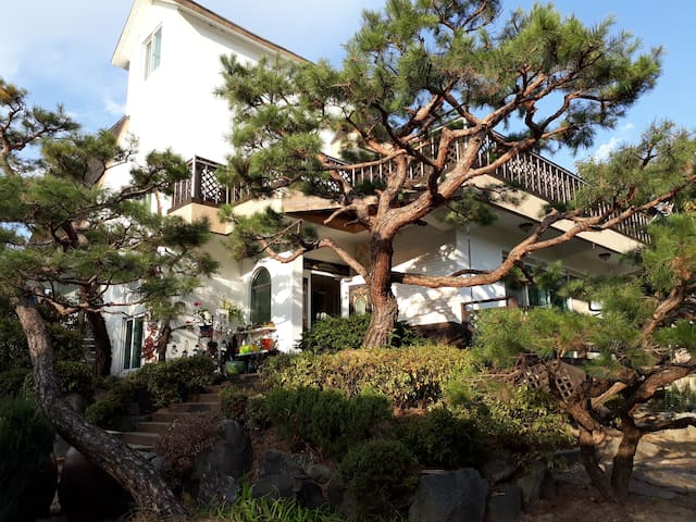 청남대/대청호 주변에 위치한 아름다운 전원주택