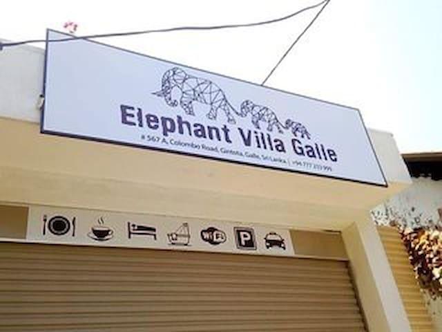 Elephant vila galle s2