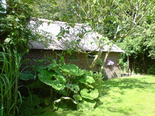 LaVendel zomerhuis met een ruime afgebakende tuin - Den Burg