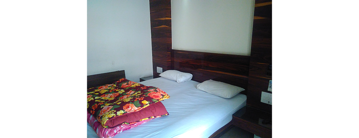 Beautiful Spacious Room in Safadrjung - New Delhi - House