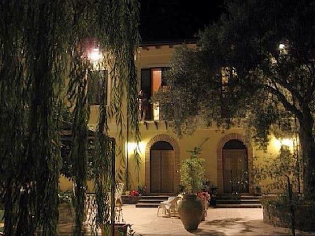 VillaOceri,antico frantoio Magnolia - Gioiosa Marea - Apartamento