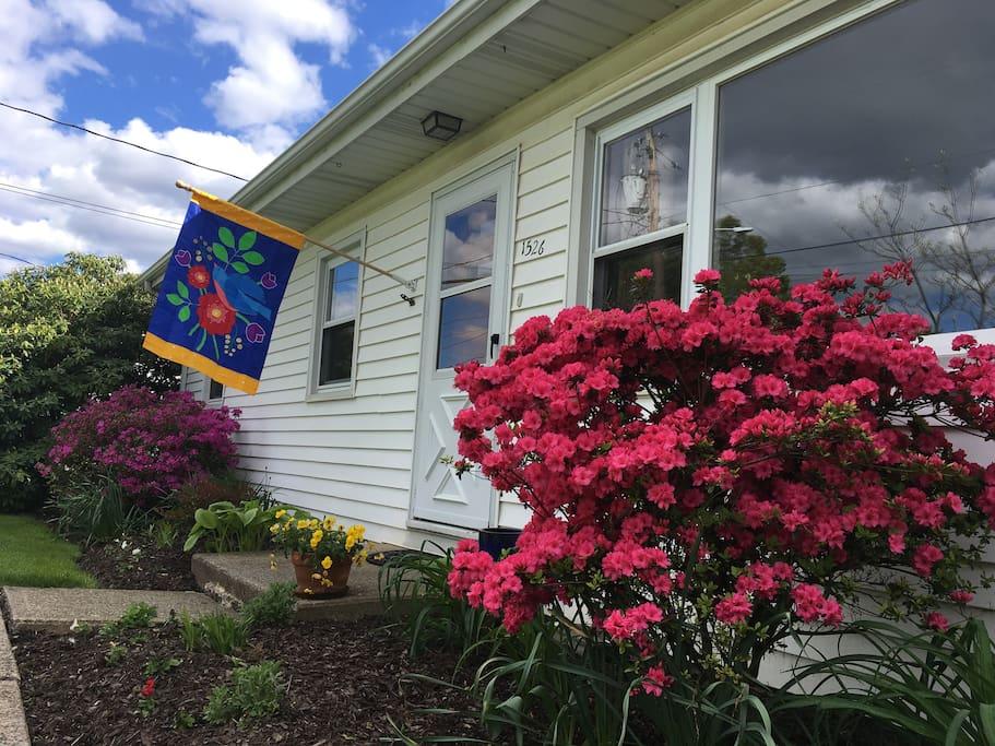 Front door in springtime.