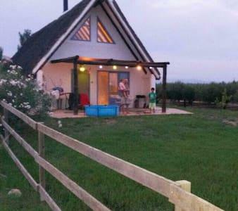Barraca tradicional en el Delta del Ebro - 德尔特夫雷 (Deltebre) - 自然小屋