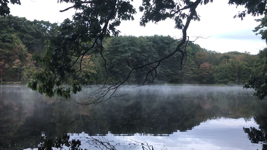 Serene Lakefront Cottage