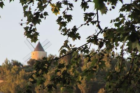 Maison de village Provence entre Avignon et Arles - Boulbon