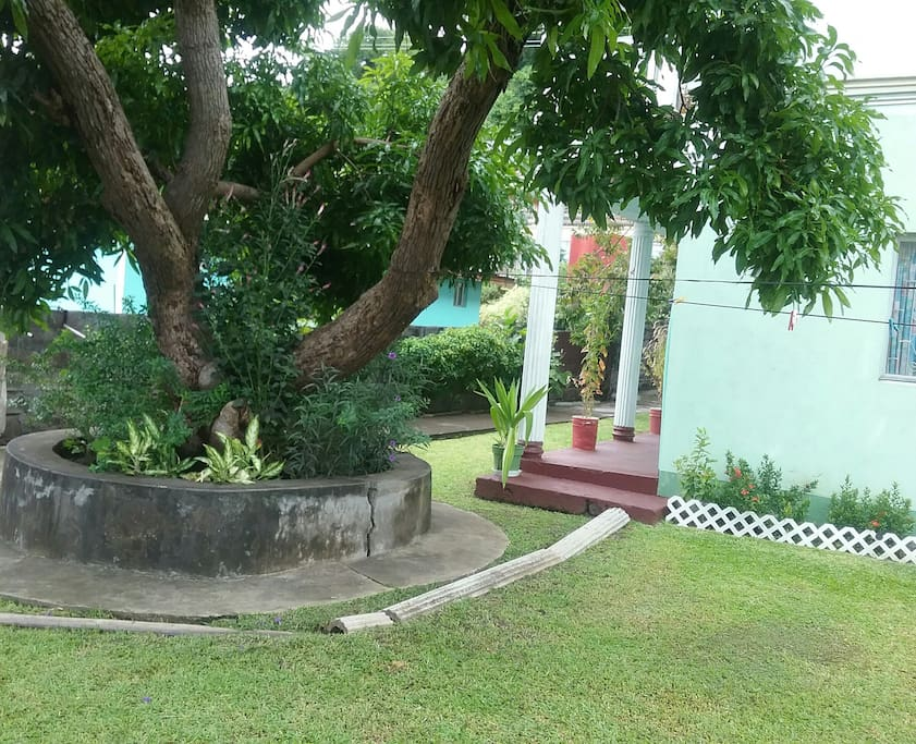 It's very cool and relaxing under the mango tree on the grounds of the property