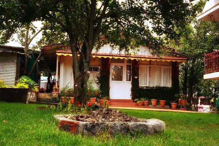 MySpace Holiday Inn - Solitude Villa