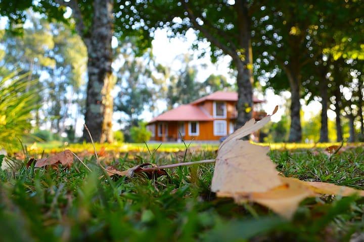 Casa em Caravaggio - Farroupilha - Kabin