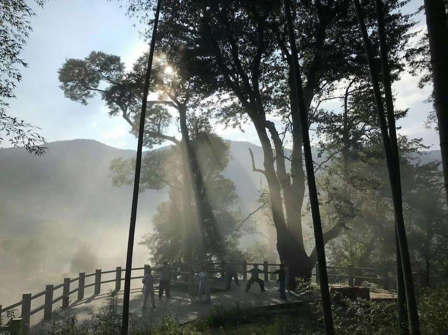 周边环境1 此处为观景台,有参天古树,晨可运动,拍照,观云海