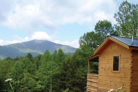 Hot Springs Log Cabins -HOT TUBS! (near Asheville) - Hot Springs - Kisház