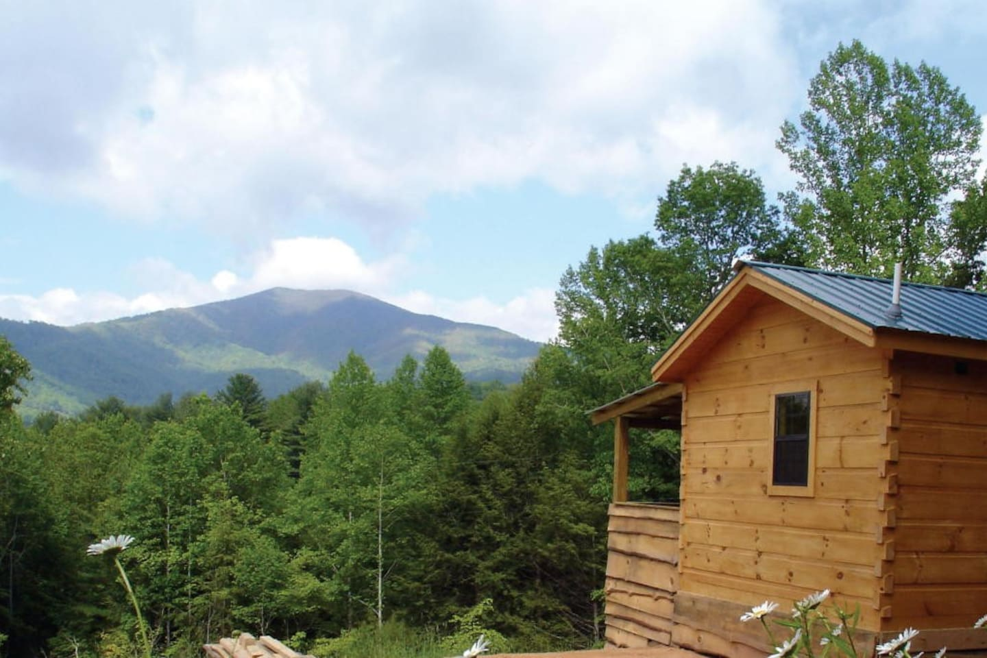 Hot Springs Log Cabins and Bluff Mountain