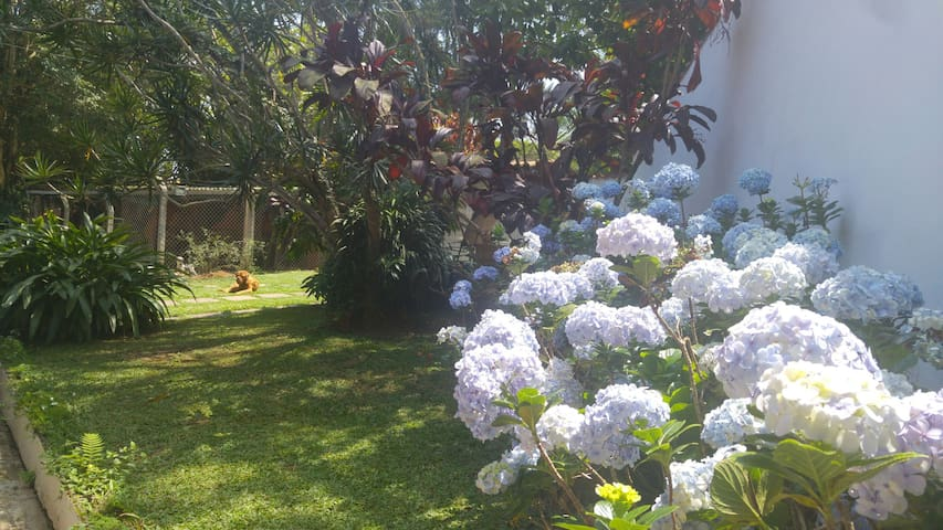 Local amplo e de natureza bela - Diadema - Hus
