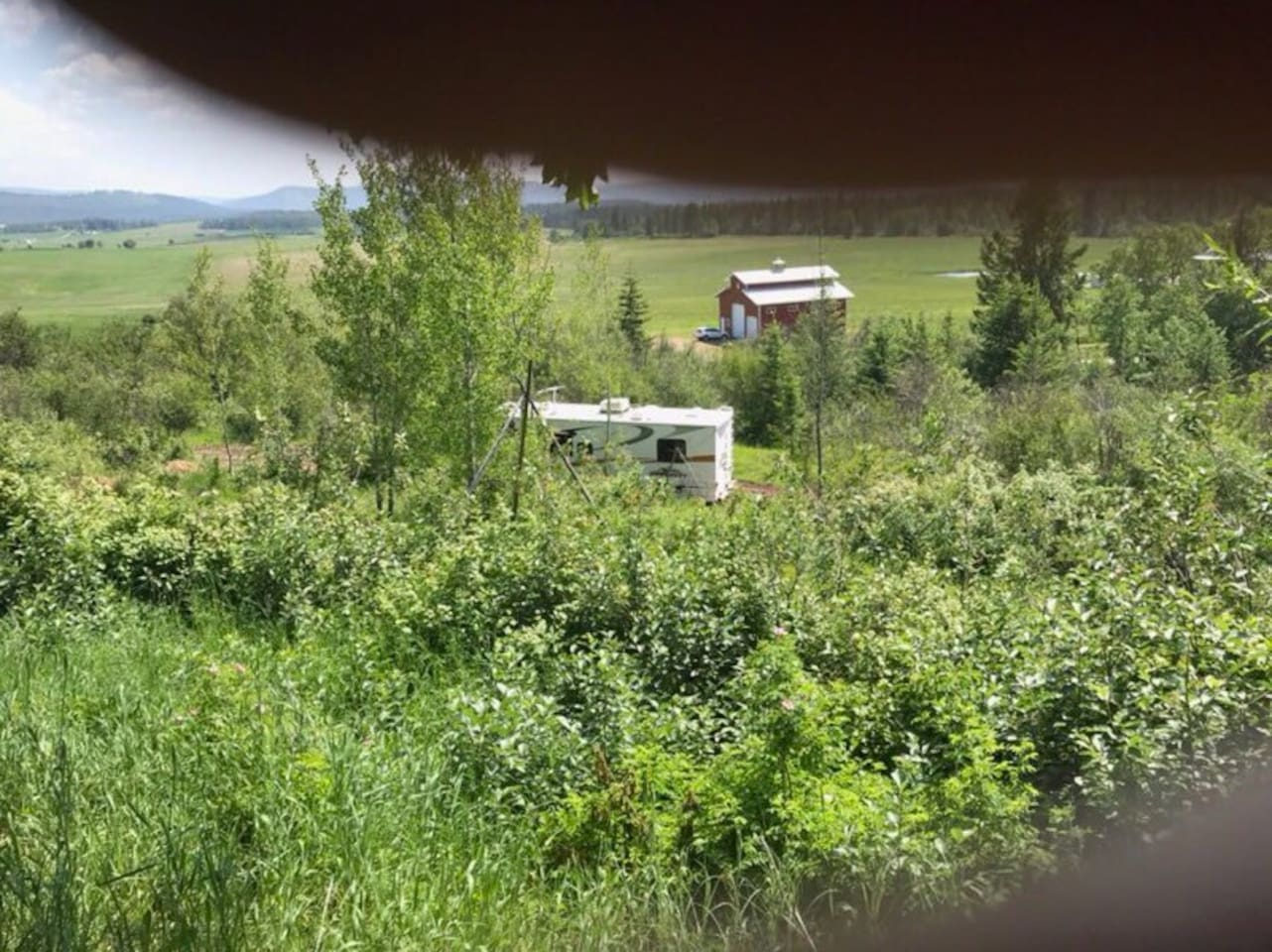 RV is parked on private driveway on 10 acres in the middle of Aspen trees.