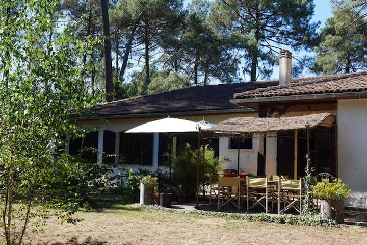 Holiday home with swimming pool. Pines and garden - Cestas - House