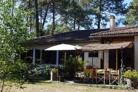 Holiday home with swimming pool. Pines and garden - Cestas - Ház