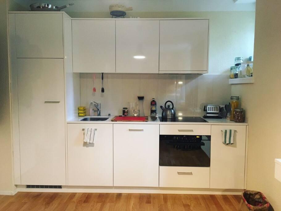 The Great Kitchen. Large fridge (left), dishwasher, oven(slash) microwave. Stocked with utensils.