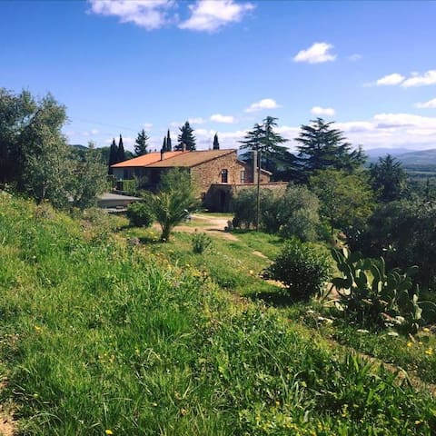 COZY APARTMENT IN SUVERETO-PODERE BALOO