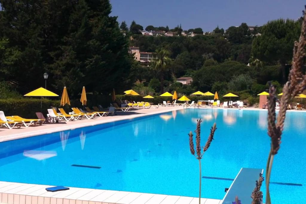 Olympic swimming pool / baby pool / next to restaurant (fees apply)