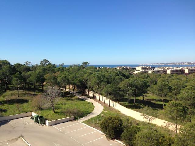 Beautiful Beach Apartment  Algarve/Portugal