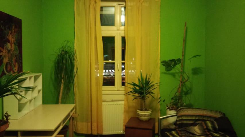 Schönes Altbauzimmer in zentraler Lage - Heidelberg - Wohnung