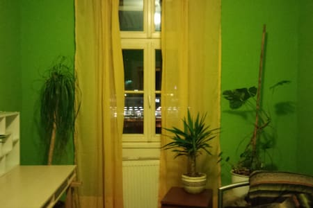 Schönes Altbauzimmer in zentraler Lage - Heidelberg - Leilighet