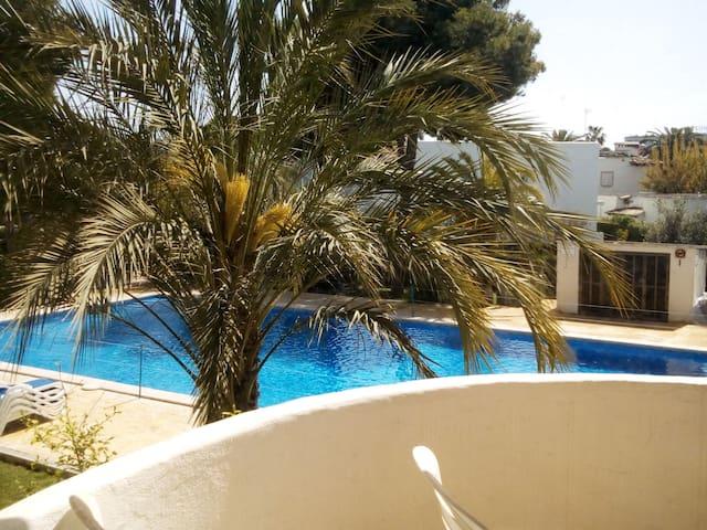 Magiques vacances,  Vie estivale de Puerto Alcudia
