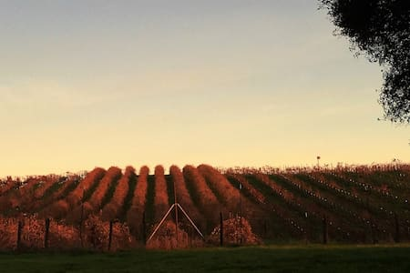 Heart of Wine Country - Plymouth - Talo