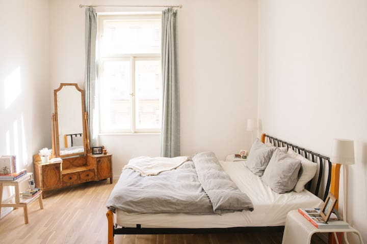 Bright and Spacious Home in Prague's Best Area