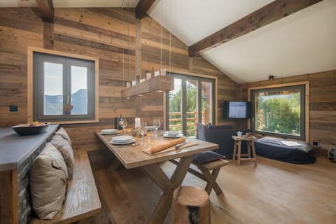 Luxury for 6 • Sauna • Chalet Capricorne