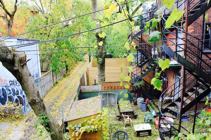 Beautiful Spacious Cozy Mile End Apartment