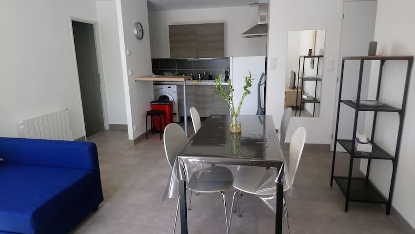 Appartement proche Groupama Stadium et ZI Meyzieu