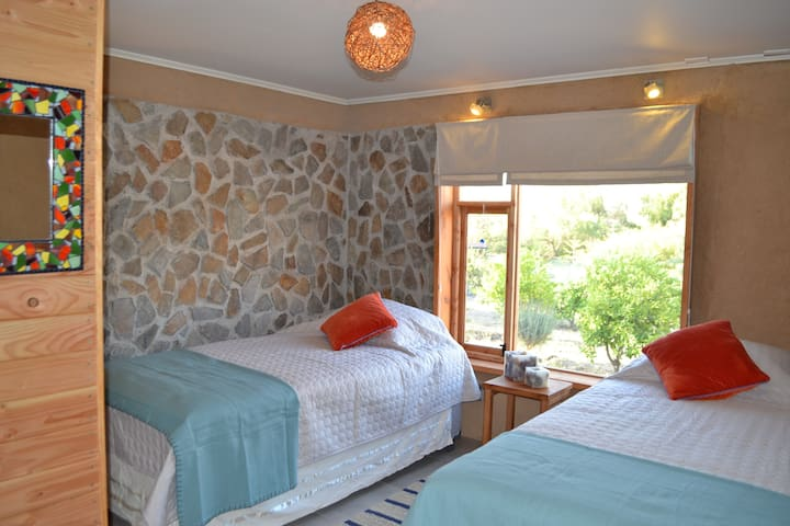 Elqui Valley , quiet room two beds in green bnb.