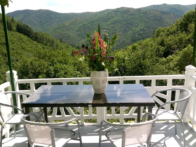 loue en cevennes appartement  3 pieces terrasse - Vialas - Flat