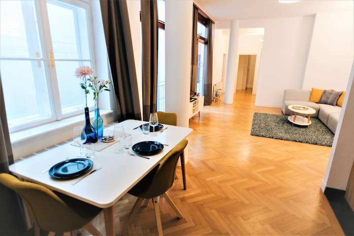 Apartment in the heart of Vienna (Sing 18, Top 7)