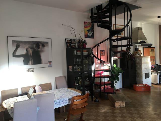 Große sanierte Altbauwohnung  Alturfahr Linz