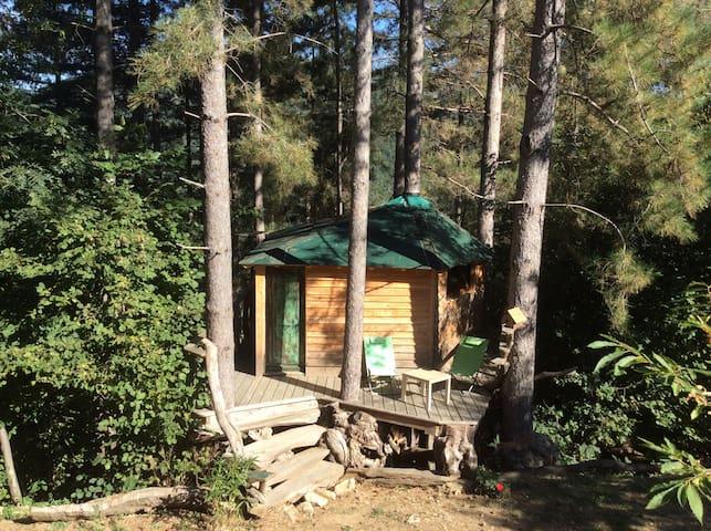 cabane dans les pins - Beaumont