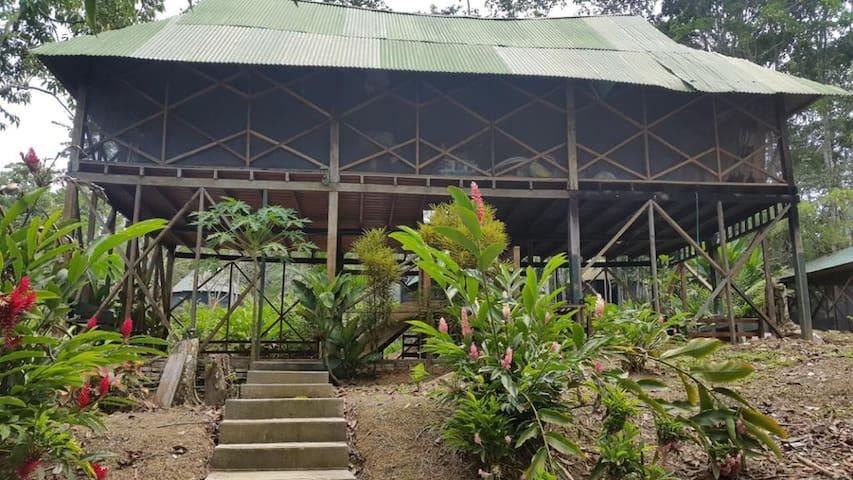 Eco Hotel Yurupary - Puerto Nariño - Amazonas