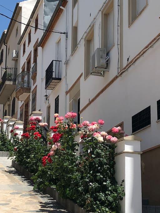 Calle Cañada