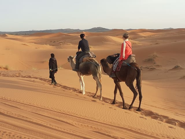 Camel tour in the desert of merzouga