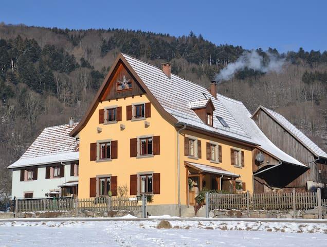 En hiver, balades en raquette, ski de piste et de fond au Schnepfenried à 15 mn.