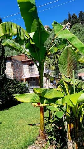 Casa Vacanze il ParaPendio