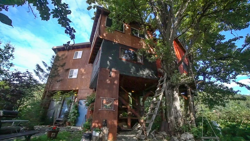 Treehouse Too! - Cottonwood Cabins