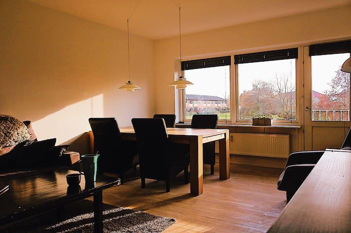 Deluxe spacious apartment, beautiful natural light