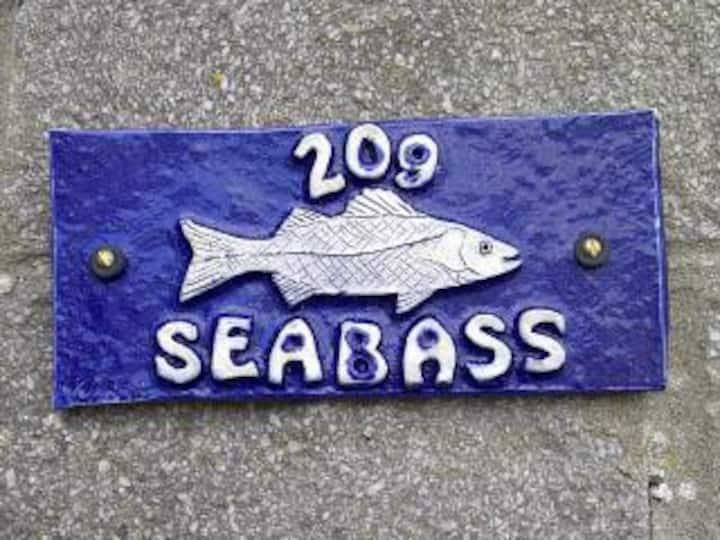 209 Seabass Trewent Park