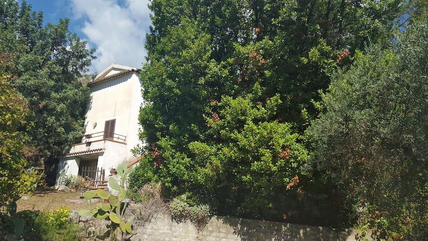 Delizioso casale nella campagna - Santo Stefano di Spigno Saturnia  - House